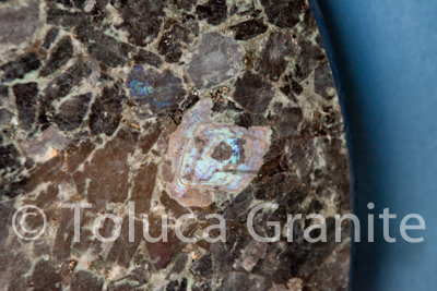 volga-blue-granite-table-austin-texas-4