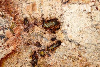 Harmony Bordeuax Granite for countertops