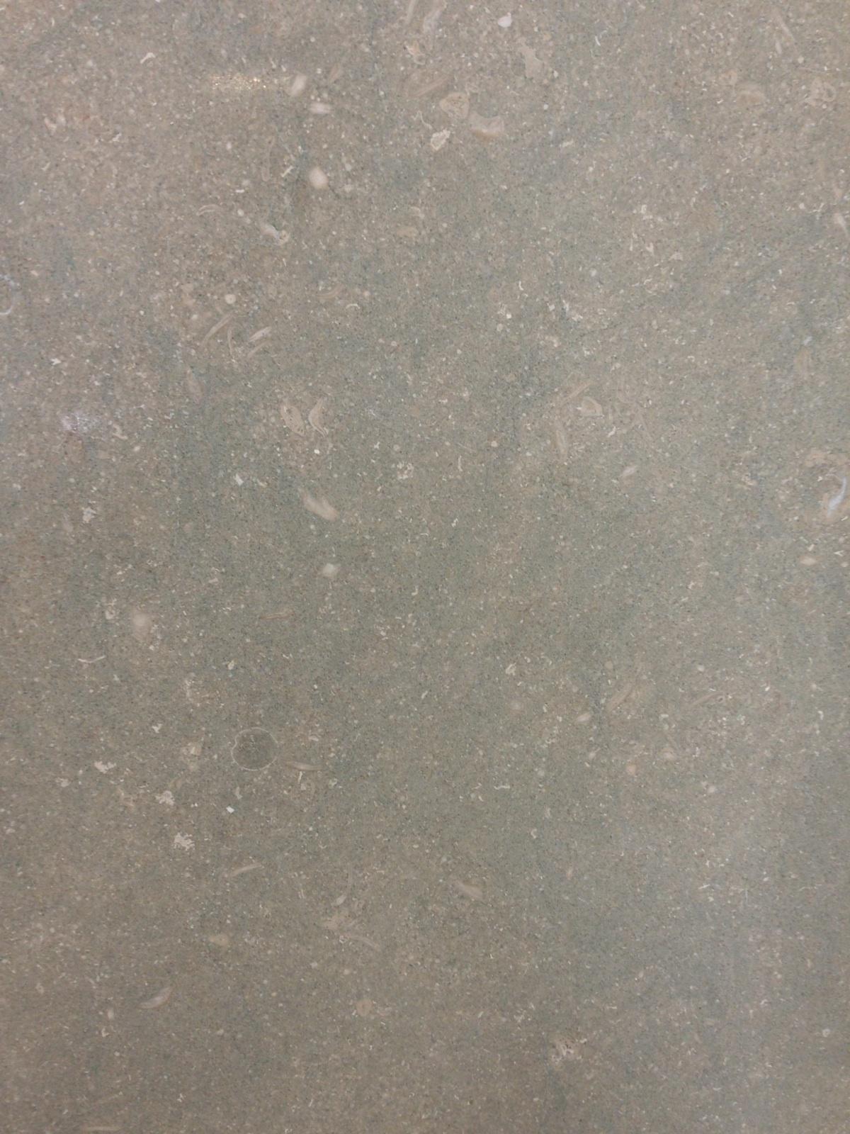 Sea Grass Limestone close up