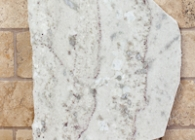 20101220-tolucagranite-samples-40