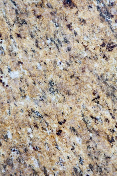 Giallo Verona Granite detail